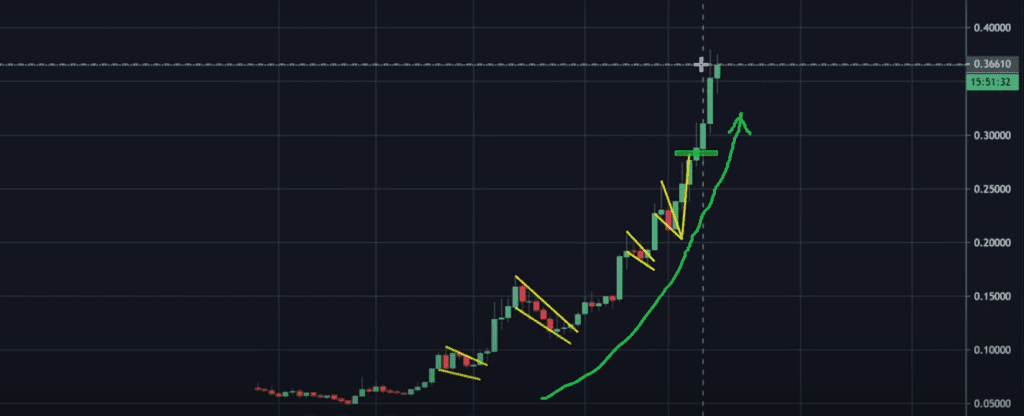 Parabolic rally of the altcoin market